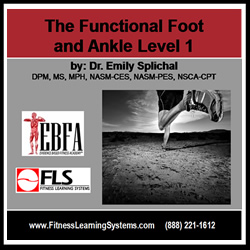 Functional Foot and Ankle Level 1 Image